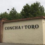 Um tour pela vinícola Concha y Toro