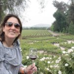 Concha y Toro é uma das vinícolas mais admiradas do mundo em 2018