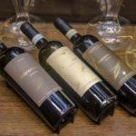 Os novos vinhos do Maremonti