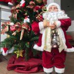 Os símbolos do Natal: a árvore