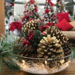 Os símbolos do Natal: a pinha