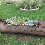 Vídeo novo: renovando um tronco de árvore