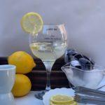 Drink do dia: Gin tônica