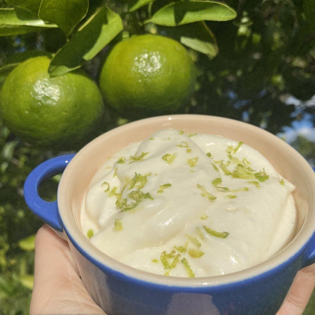 Mousse de limão refrescante